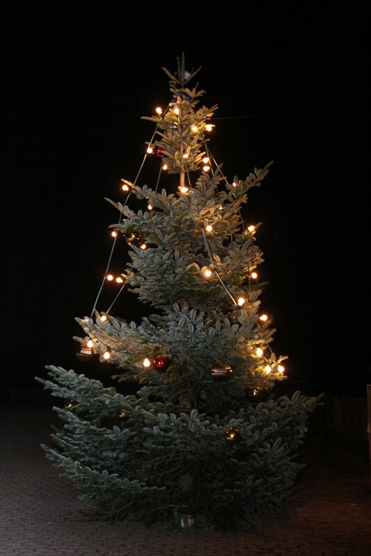 Wer Schmückt Den Weihnachtsbaum.Ortvorsteherin Lieselene Scherer Schmückt Den Weihnachtsbaum Auf Dem